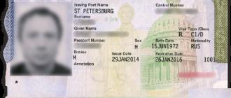 Американская виза C1D для моряков – что это и как ее оформить?