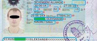 Как выглядит виза в паспорте: читаем шенген