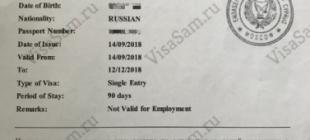 Анкета на предварительную визу на Кипр