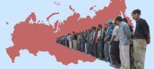 Трудовая миграция населения: виды миграции трудовых ресурсов, закон в России