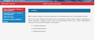 Виза в США через Грузию или другие страны: в чем выгода