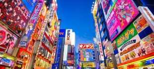 Налоги в Японии: особенности налогообложения граждан, размер НДС, ставки на прибыль, недвижимость и транспорт