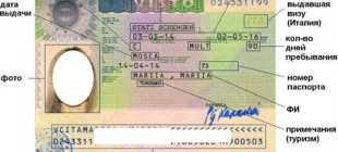 Как получить шенгенскую визу через МФЦ – инструкция по получению визы
