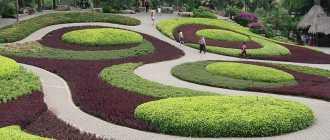 Тропический парк Нонг Нуч – полезная информация для туристов